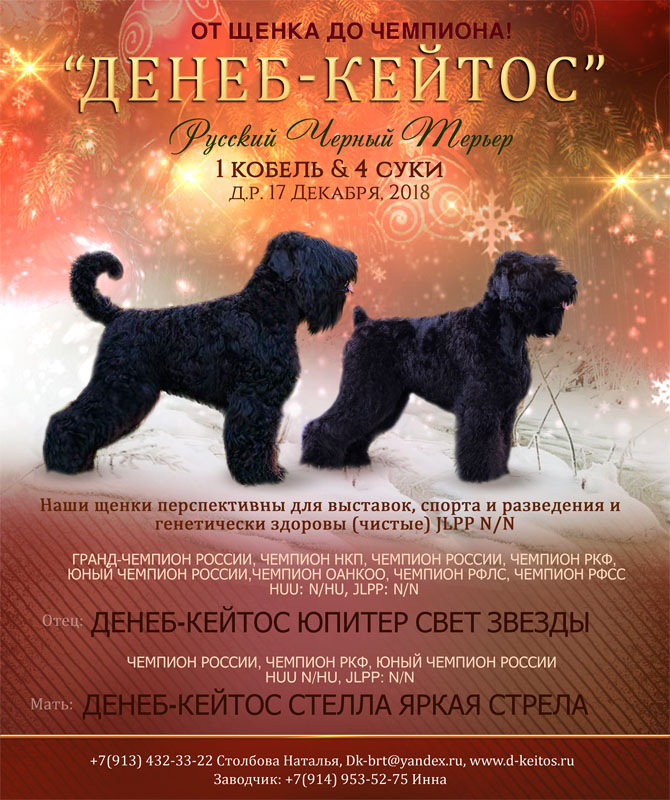 http://d-keitos.ru/kcfinder/images/PUPPY/2018_Jupiter_Stella/rus2.jpg