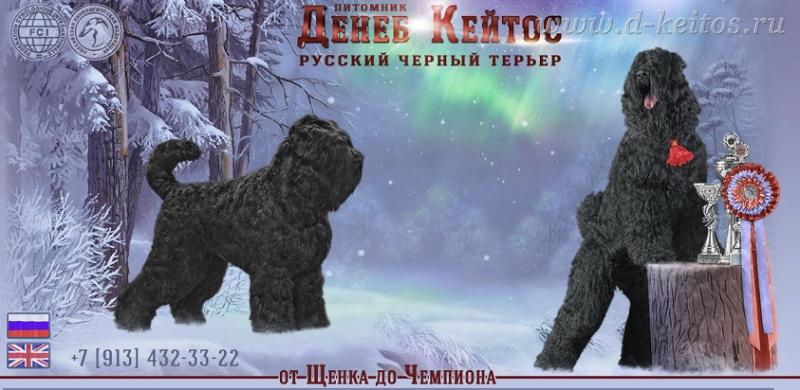 http://d-keitos.ru/kcfinder/images/foto/a1.jpg
